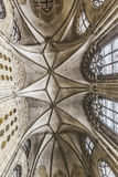 Gotiskt tak av kyrkan av den Teutonic beställningen i Wien Arkivfoto