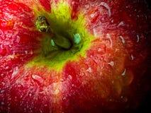 Gotita de agua en superficie brillante de la manzana roja en fondo negro Fotografía de archivo libre de regalías
