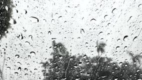 Gotitas de agua sobre el vidrio en la lluvia metrajes
