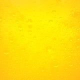 Gotitas en la cerveza recientemente vertida Imagen de archivo libre de regalías