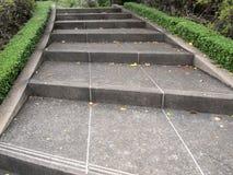 Gotng лестниц вверх в саде Стоковое Фото