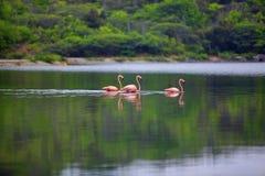 gotomeer λίμνη Στοκ Φωτογραφίες