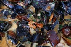 Gotować dekatyzuję piec mussels zamknięty up Fotografia Royalty Free