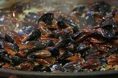 Gotować dekatyzuję piec mussels zamknięty up Zdjęcie Stock