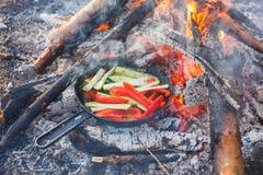 Gotować naczynia od czerwonych dzwonkowych pieprzy i ogórków w niecce na ogieniu zdjęcia stock