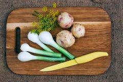 Gotować z świeżymi warzywami Fotografia Stock