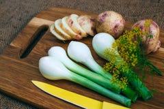 Gotować z świeżymi warzywami Fotografia Royalty Free