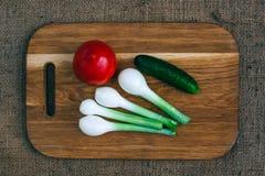 Gotować z świeżymi warzywami Zdjęcia Royalty Free