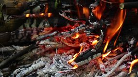 Gotowa? na ogieniu piknik Du?y ognisko w naturze zbiory wideo