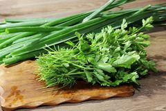 Gotowa? w kuchni greenfield Zielony onions zdjęcie royalty free