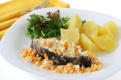 gotowana jajka ryba grula Zdjęcia Royalty Free