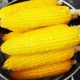 gotowana kukurudza Obraz Stock