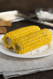 Gotowana kukurudza na talerzu na drewnianym stole Fotografia Royalty Free