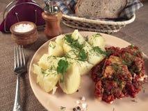 Gotowane grule z stewed warzywami i rybą zdjęcie stock