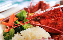 gotowane homar Obrazy Royalty Free