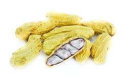 Gotowani arachidy. Fotografia Stock