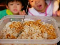 Gotowani biali ryż mieszający z Tajlandzką wysuszoną tartą wieprzowiną Muczą Yong, yummy, prostego i szybkiego posiłek dla dzieci zdjęcia stock