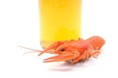 gotowani crayfish Obrazy Royalty Free