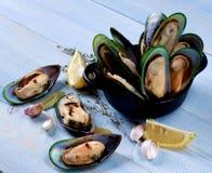Gotowani Zieleni Mussels Obraz Stock