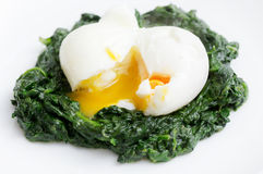 Gotowany jajko i szpinak Fotografia Stock