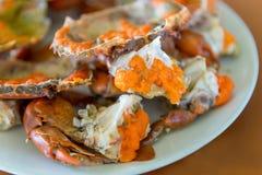 Gotowany krab świeży i gorący - wyśmienicie zakąska, odparowany krab pokazuje wyśmienicie kraba ` s jajka wśrodku swój skorupy zdjęcie stock