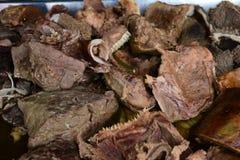 gotowany mięso dla sprzedaży Zdjęcia Stock