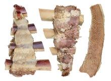 Gotowany mięso wołowina, cielęcina/- podstawa żywienioniowy jedzenie dla hemoglobiny przywrócenia odosobniony obrazy stock
