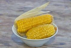 Gotowany słodkiej kukurudzy zbliżenie Obraz Stock