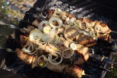 Gotowy mięsny shish kebab na skewers Obrazy Royalty Free