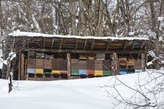 Gotthard massif (Switzerland) - Beehives at snow Royalty Free Stock Photography