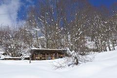 Gotthard massif (Switzerland) - Beehives at snow Royalty Free Stock Image