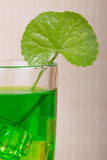 Gotu kola juice Royalty Free Stock Images