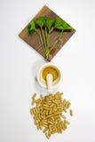 Gotu kola leaf herb Royalty Free Stock Images