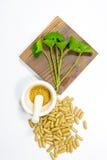 Gotu kola leaf herb Royalty Free Stock Photo