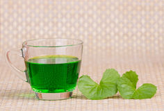Gotu kola Stock Photos