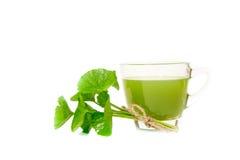 Gotu kola's leafs drink Royalty Free Stock Image