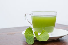 Gotu kola's leafs drink Stock Photography