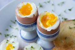 Gotujący się jajka makro- obraz stock