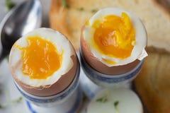 Gotujący się jajka makro- zdjęcia stock
