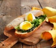 gotująca się Jajeczna kanapka z Zieloną sałatką i majonezem fotografia stock