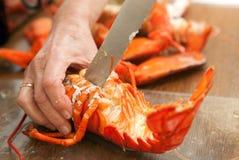 Gotujący homar zdjęcie royalty free