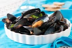 Gotujący mussel obrazy royalty free