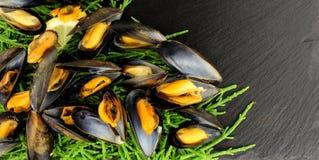 Gotujący rozłup I Mussels zdjęcia stock