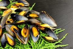 Gotujący rozłup I Mussels fotografia royalty free