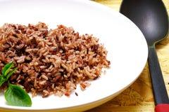 gotujący ryż obraz royalty free