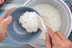 Gotujący ryż na plastikowej kopyści w elektrycznej ryżowej kuchence Zdjęcia Royalty Free