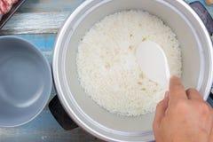 Gotujący ryż na plastikowej kopyści w elektrycznej ryżowej kuchence Obraz Royalty Free