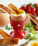 Gotujący się jajko z grzankami obraz stock