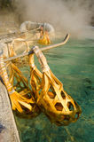 Gotuje się jajko z Chiangmai Gorącą fontanną. Obraz Stock