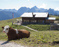Gotzen alm. Hiking through the Bavarian Alps of Southern Germany royalty free stock photos